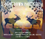 countdown_party_2011.jpg